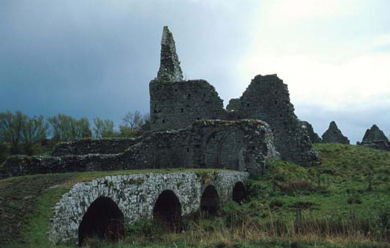 a monk in an early irish monastery essay